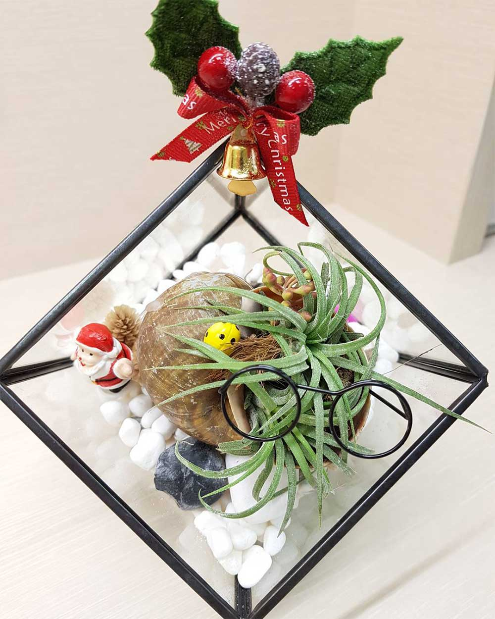 Miniature DIY terrarium decoration decorations 2019