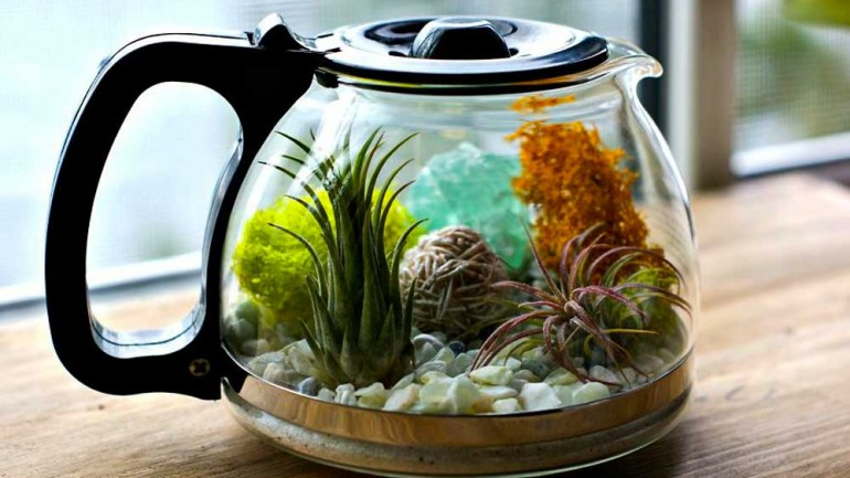 Terrarium (Miniature Garden) Decoration 2019