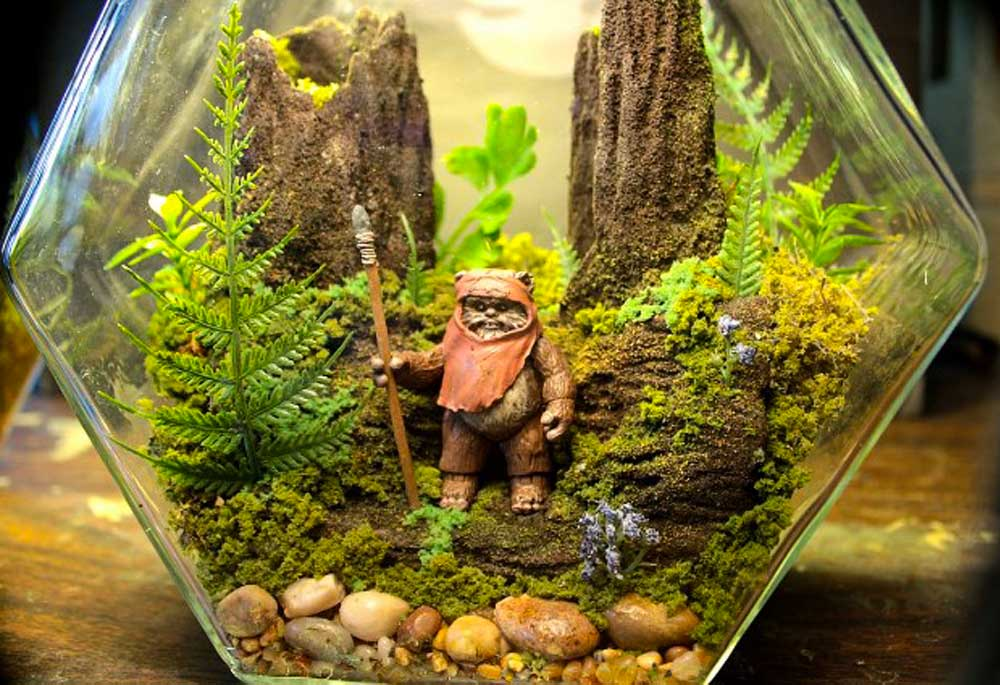 Terrarium (Miniature Garden)Construction2019