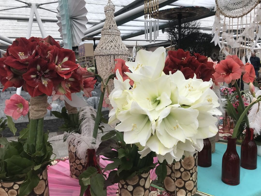 Christmas Flowers Decoration 2020 (22)