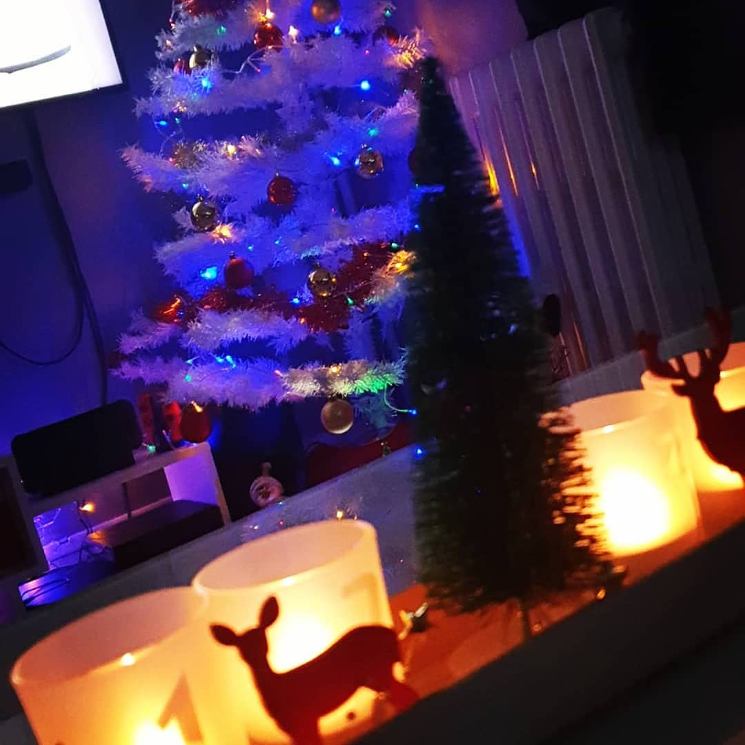 2020 Christmas Decorations at Home (14)
