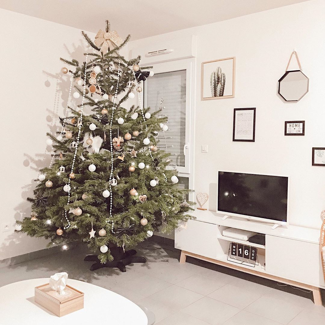 2020 Christmas Decorations at Home (2)