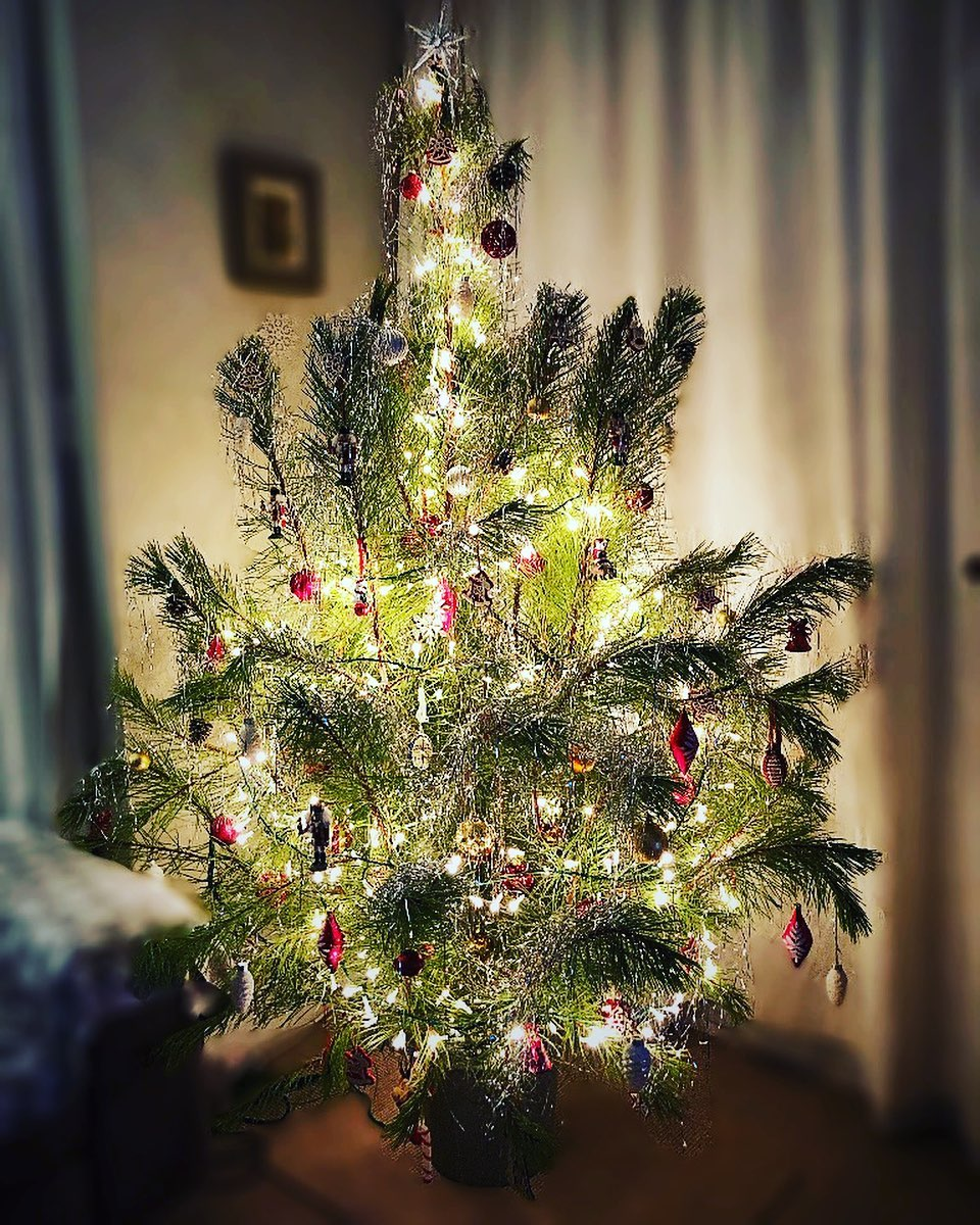 Christmas Tree for Christmas Home Decor (4)