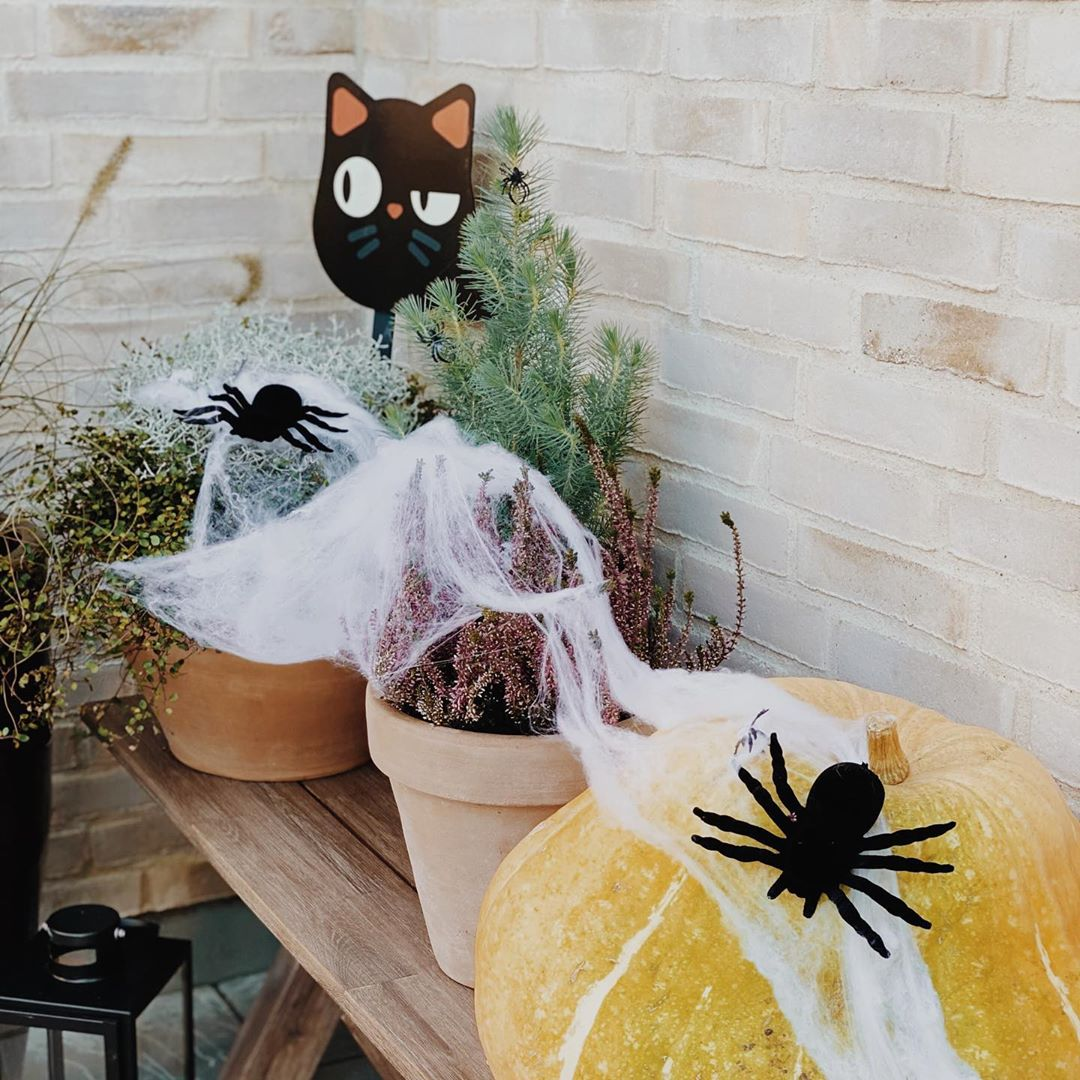Halloween Decoration and DIY decoration ideas (56)