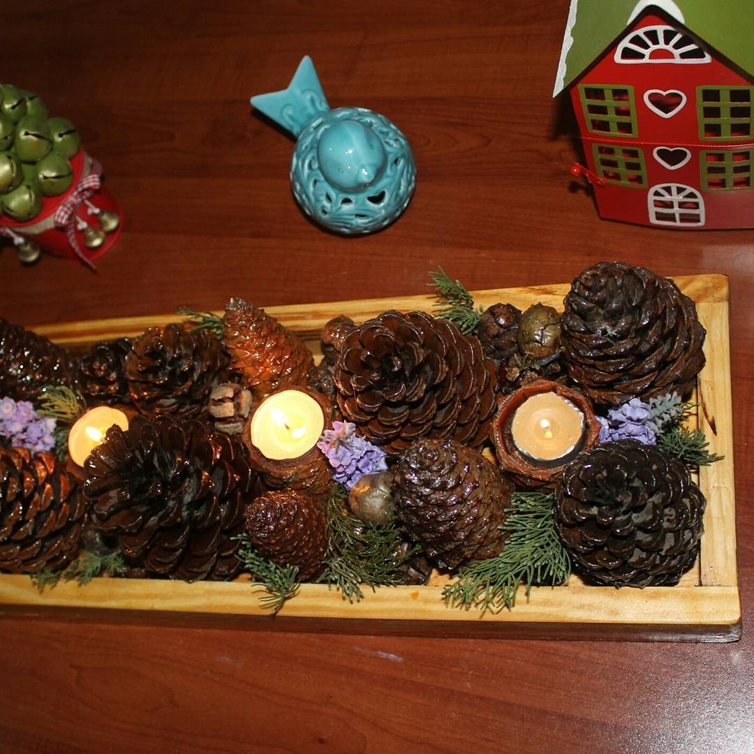 Pine Cones and Lighting (2)