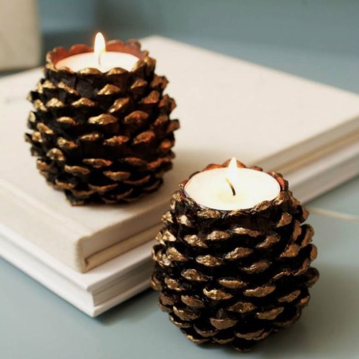 Pine Cones and Lighting (5)